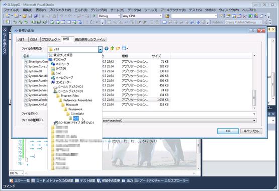 20091212_sl3_16b