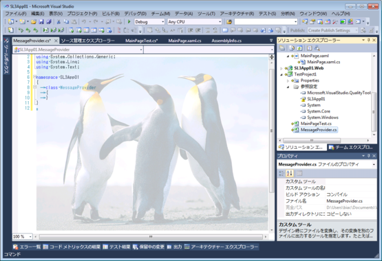 20091212_sl3_24